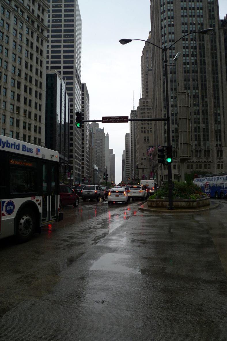 Chicago_rainy_100