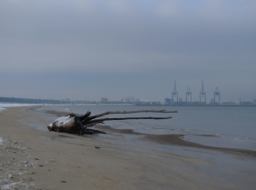 Stogi_Beach_08