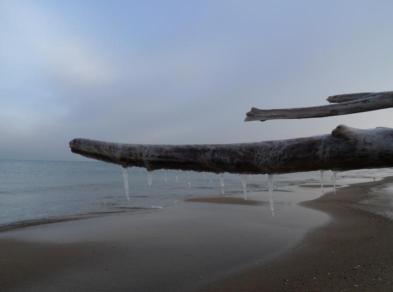 Stogi_Beach_13